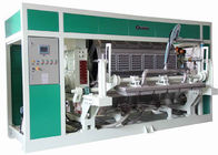 Fully Automatic Pulp Molding Equipment , High Efficiency Egg Tray Production Line