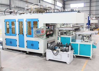 Automatic Virgin Pulp Molding Equipment for Paper Cup / Dishware Production Line